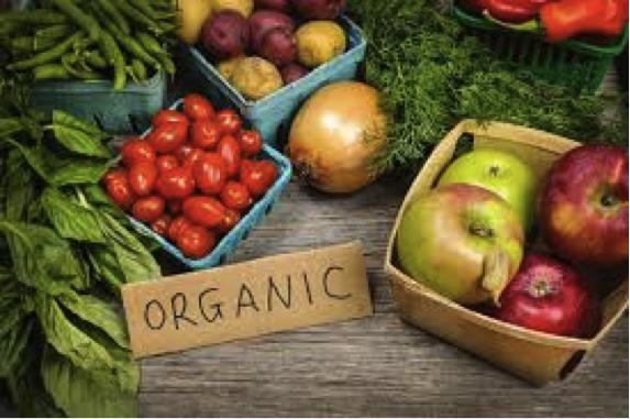 Is Organic Food a Waste of Your Hard Earned Money?