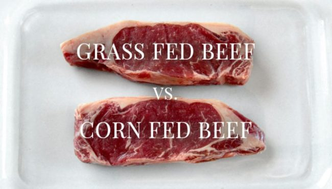 The Scoop on Grass-fed Meats
